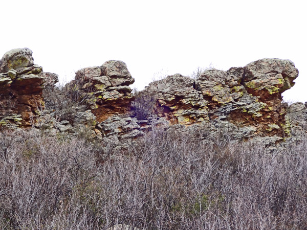 Coyote Ridge Natural Area 2014 by TVS