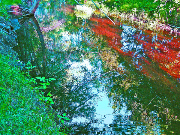 Poudre River Photo Art by TVS