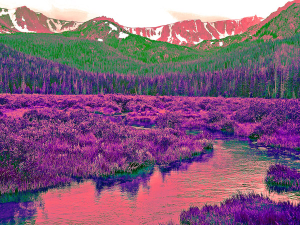 Roosevelt National Forest- Cirque Meadow Photo Art by TVS