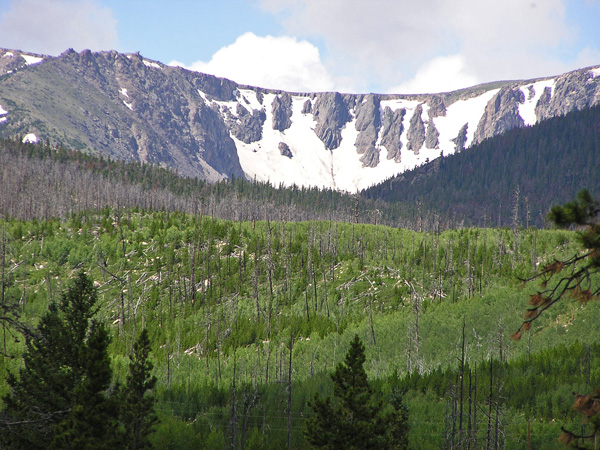 Roosevelt National Forest 2011 by TVS