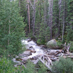 Roosevelt National Forest- South Fork of Poudre 2011 by TVS
