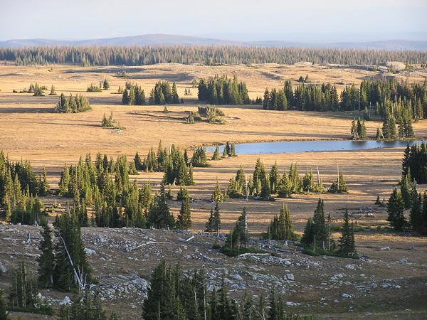 Snowy Range 2009 by TVS