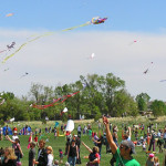 Kites in the Park 2012 by TVS