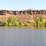 Reservoir Ridge Natural Area 1 by TVS